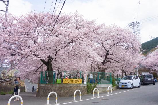 額田山荘会館児童公園