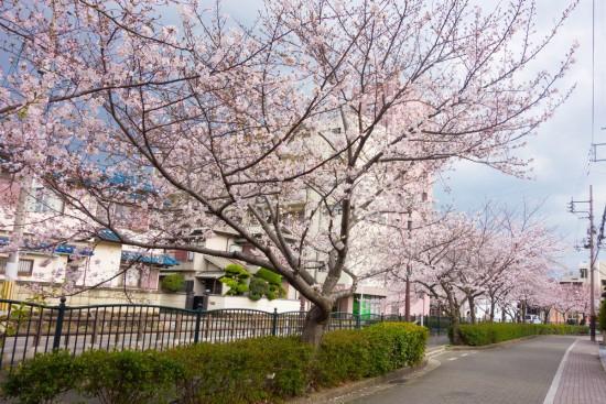 長瀬川遊歩道