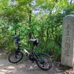 天野街道サイクリング