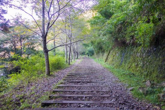 旧国鉄福知山線 廃線敷